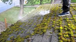 comment enlever mousse sur toiture